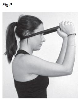 esercizio estensione collo