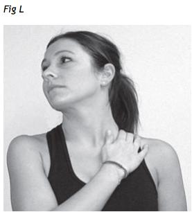 cervicale e stretching muscoli scaleno anteriore e sternocleidomastoideo