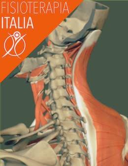 cervicale i muscoli