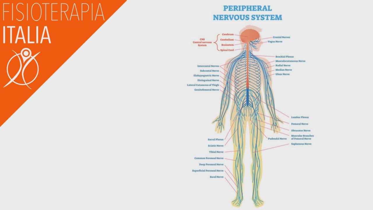 dolore cronico neuropatico periferico
