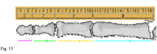 fig 13