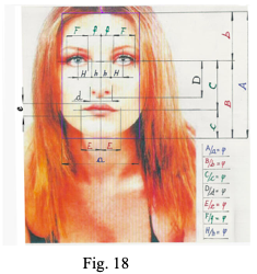 fig 18