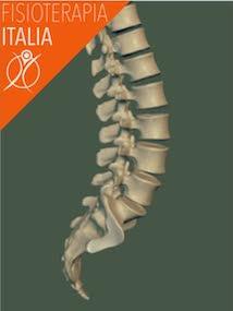 ossa della lombare