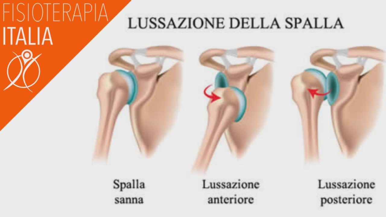 articolazione spalla