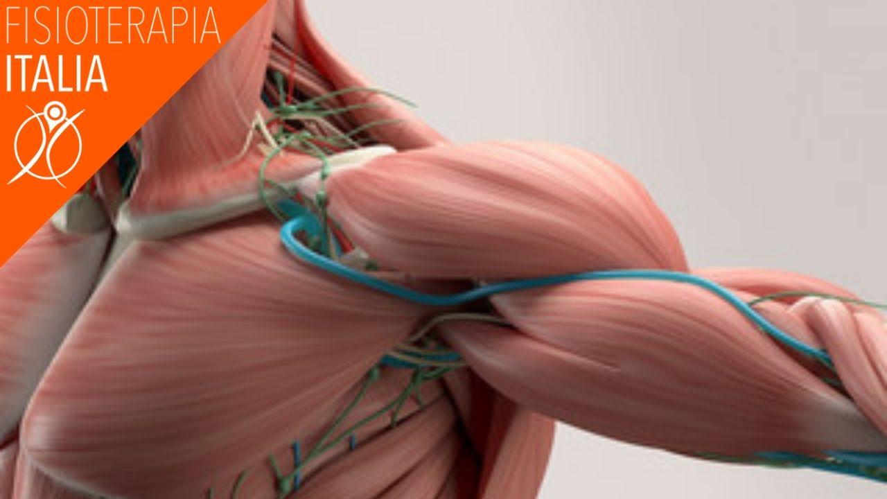 classificare gli strappi muscolari
