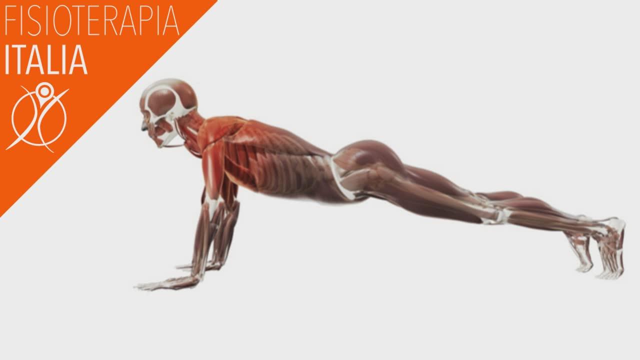 mal di schiena esercizi e terapie
