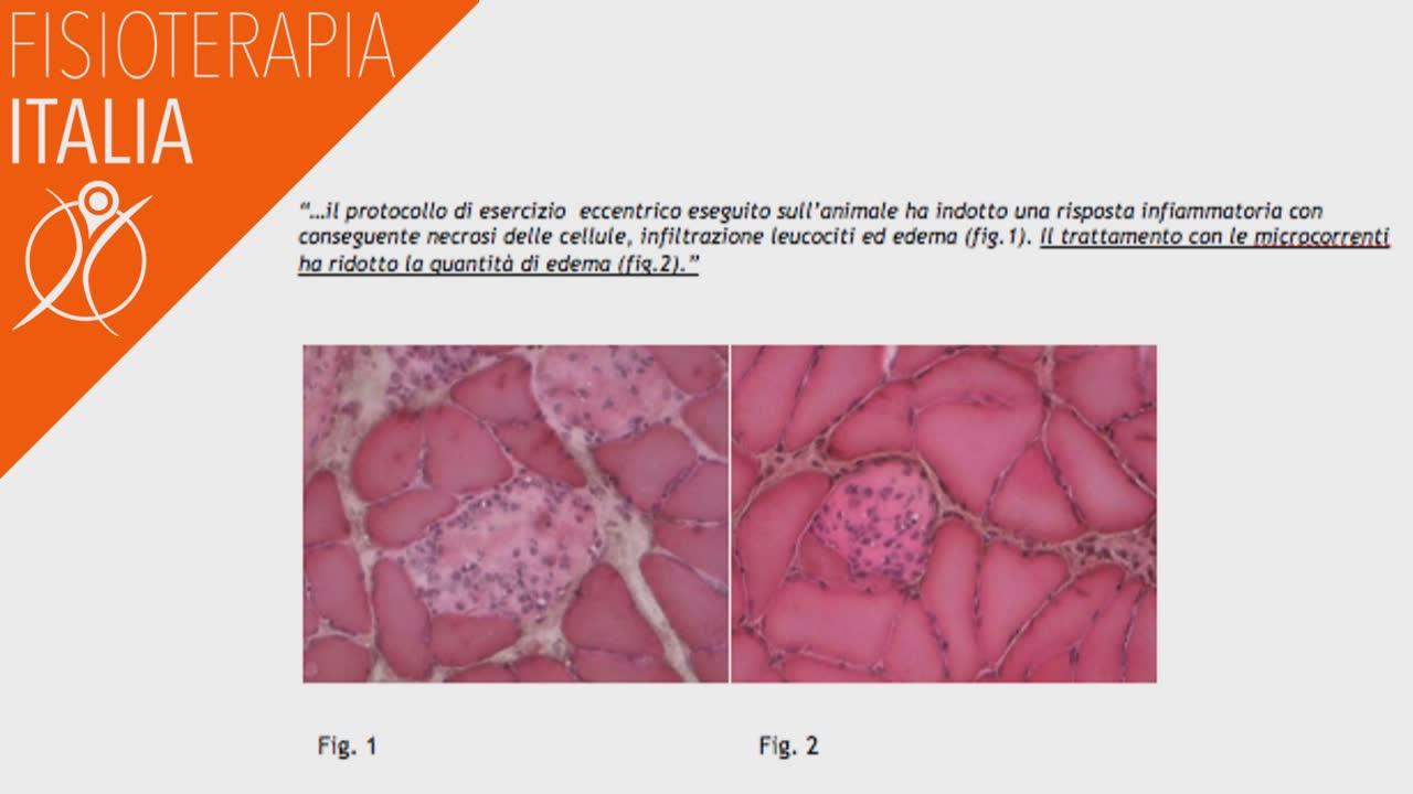 microcorrenti cosa accade nelle cellule