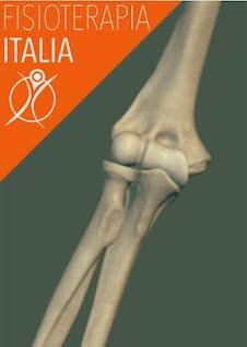 ossa del gomito