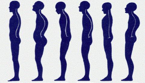 rieducazione posturale mal di schiena
