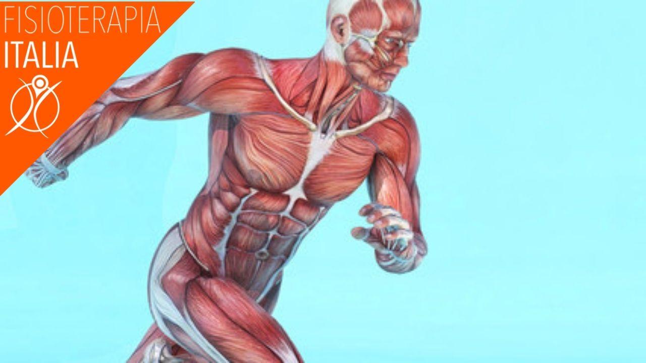 sintomi strappi muscolari